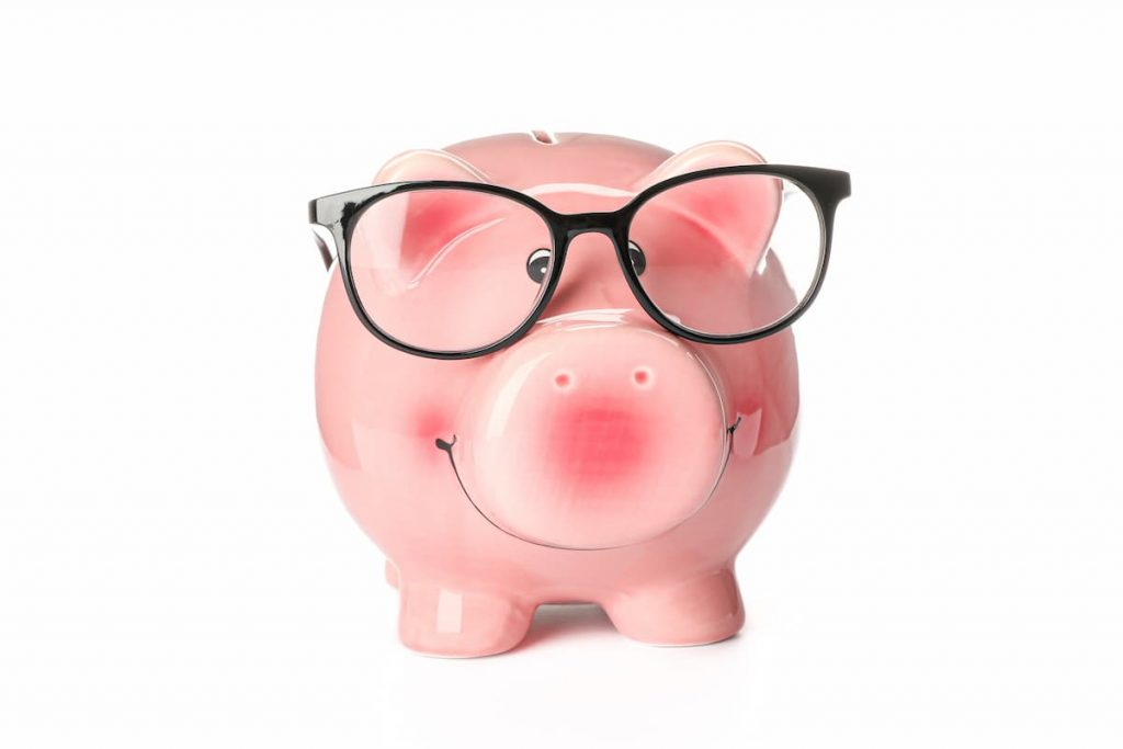 Piggy bank with glasses illustrating income protection